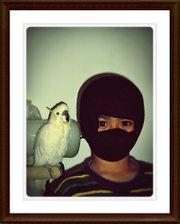 Ninjahananframe