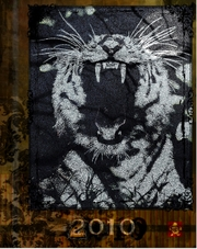 Resized_tigerroarfinal